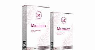 Mammax - preço - criticas - contra indicações - forum