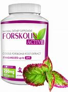 Forskolin active - onde comprar - no Celeiro - no farmacia - no site do fabricante? - em Infarmed
